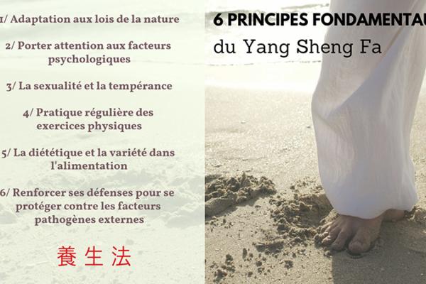 6 Yang Sheng Fa 2