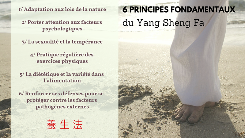 Yang Sheng Fa