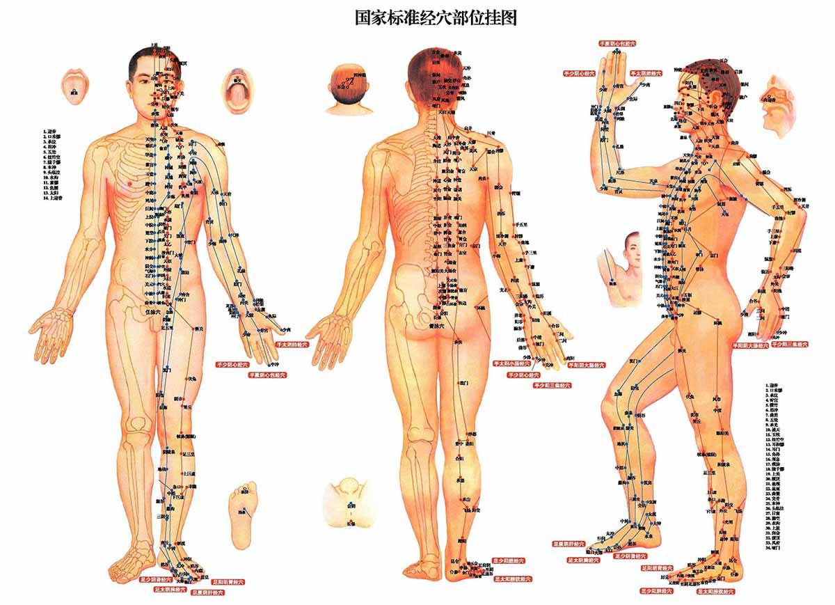 La lombalgie selon la médecine chinoise
