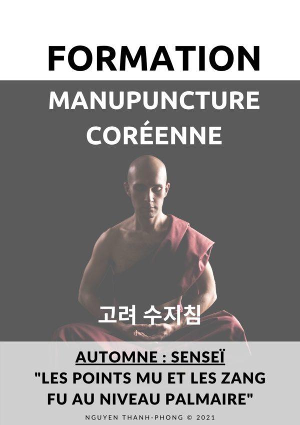Manupuncture coreenne Palier 3