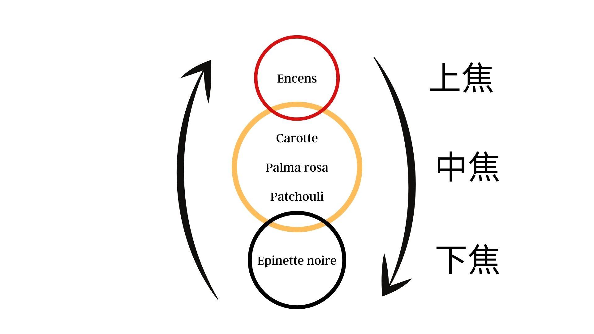 formule huile essentielle en médecine chinoise
